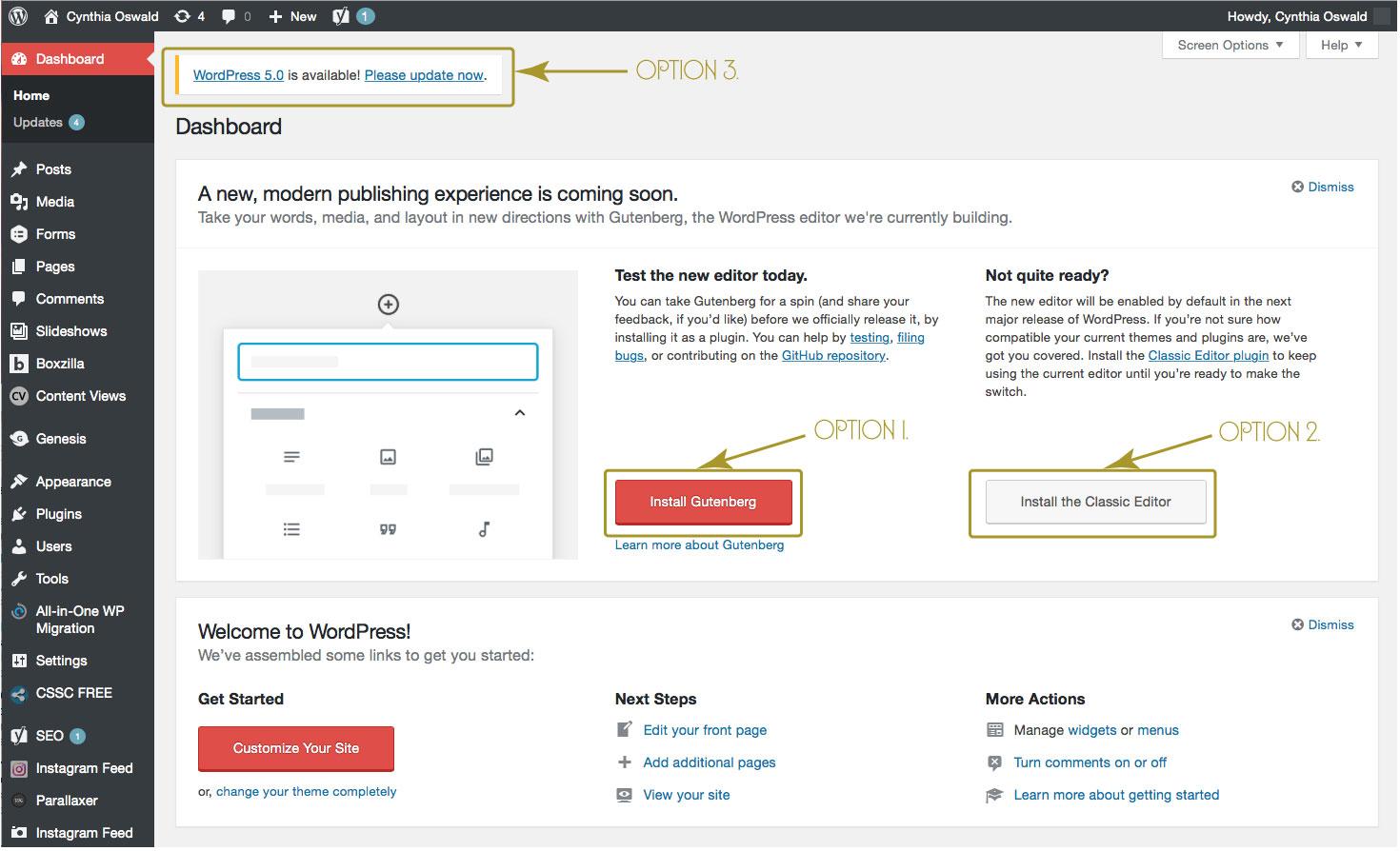 WordPress Update Options