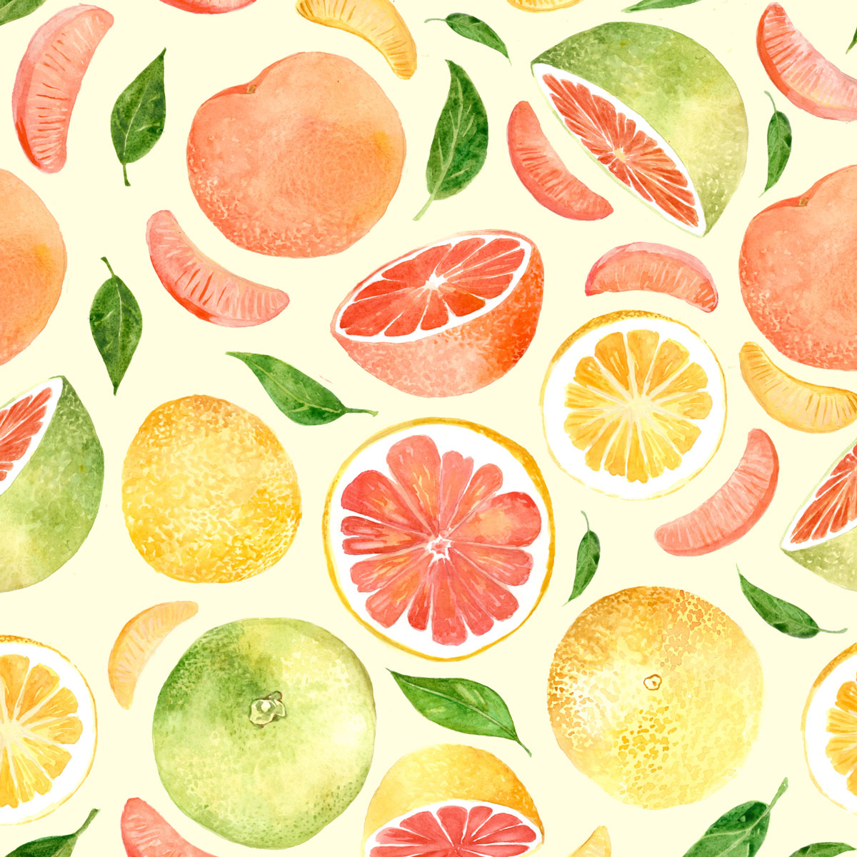 Grapefruit Watercolor Illustration