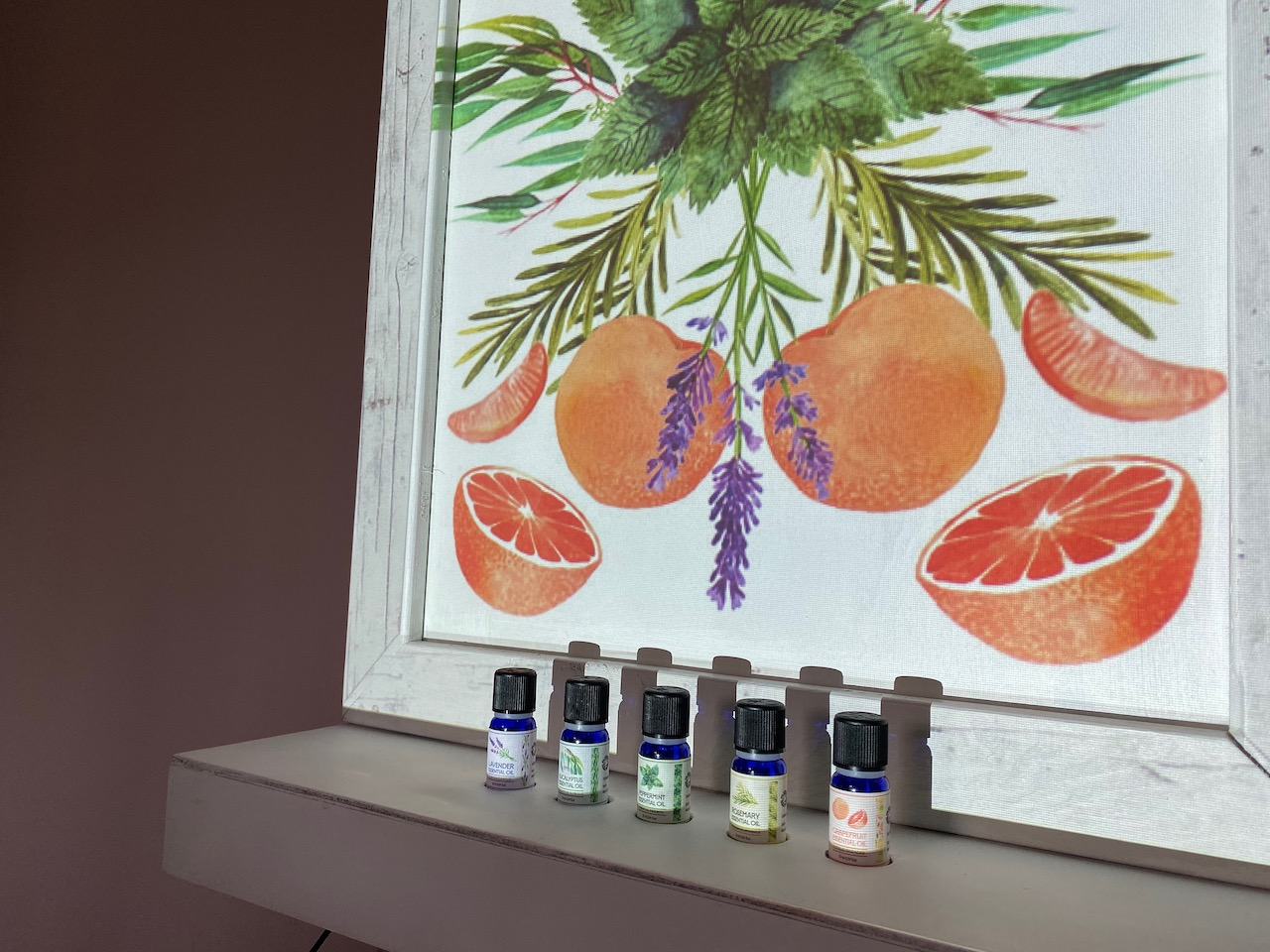 Essential Oils Interactive Space